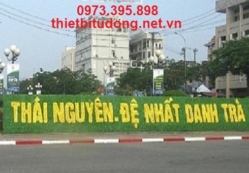 Cửa tự động tại Thái Nguyên